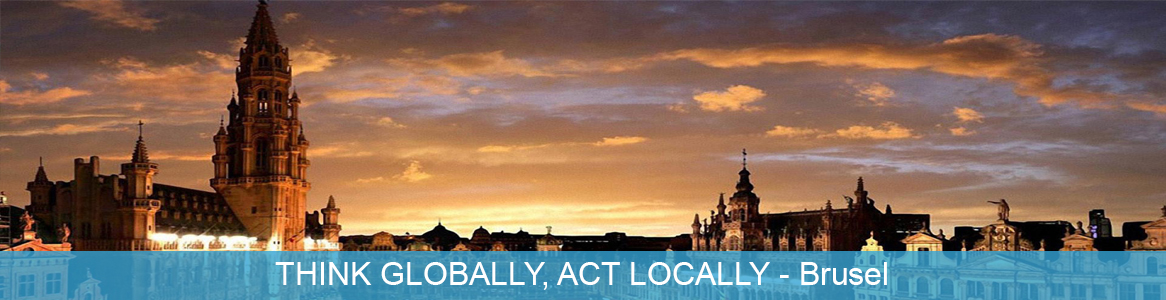 Tréning THINK GLOBALLY, ACT LOCALLY v Brusel, Belgicko