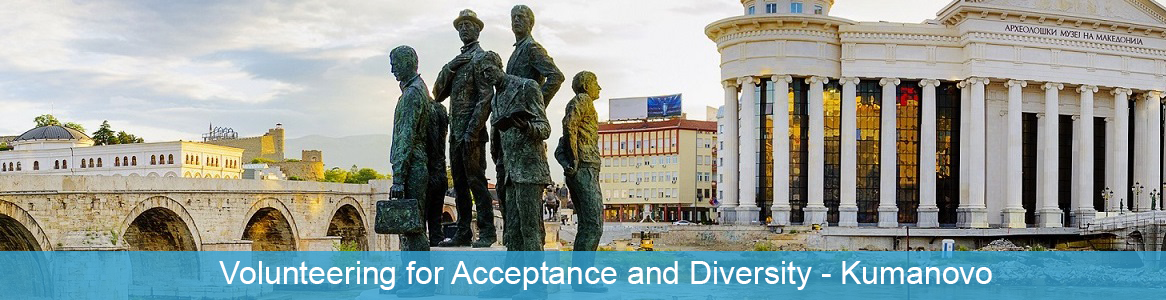 Volunteering for Acceptance and Diversity