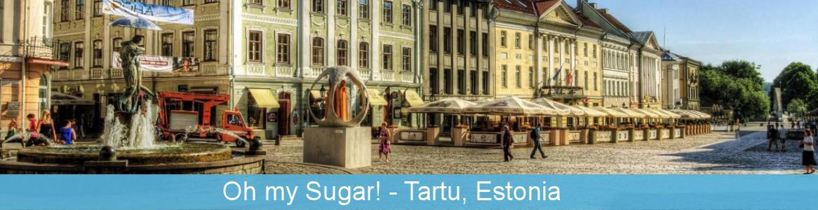 Prípravná návšteva v Estónsku