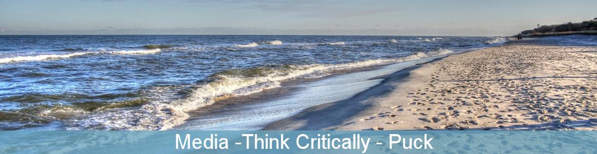 Media -Think Critically