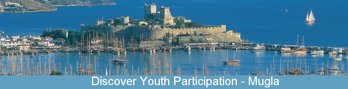 Discover Youth Participation