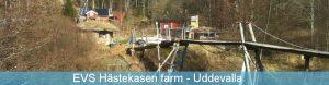 Uddevalla EVS vo Švédsku