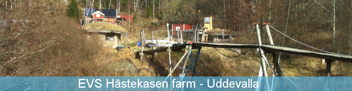 EVS Hästekasen farm