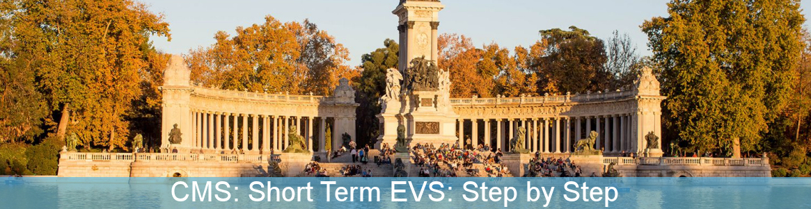 Contact Making Seminar: Short Term EVS: Step by Step