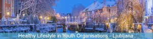 Healthy Lifestyle in Youth Organisations