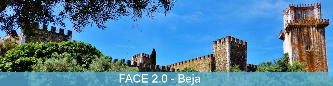 FACE 2.0
