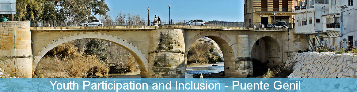 Youth Participation and Inclusion