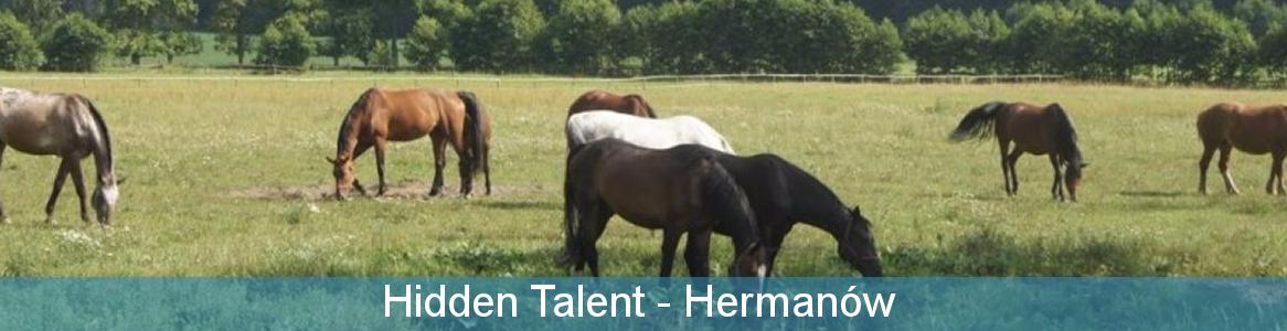 Hidden Talent Erasmus