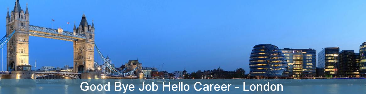 Good Bye Job Hello Career