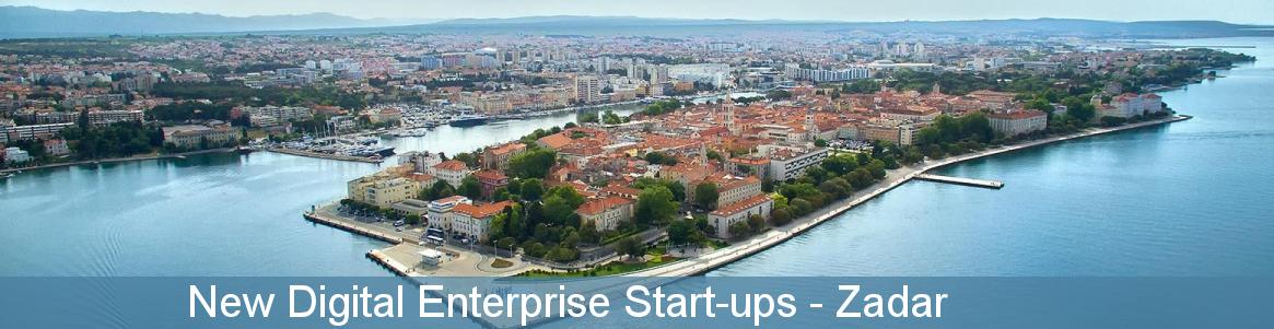 New Digital Enterprise Start-ups