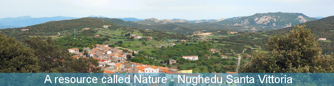 A resource called Nature - Nughedu Santa Vittoria
