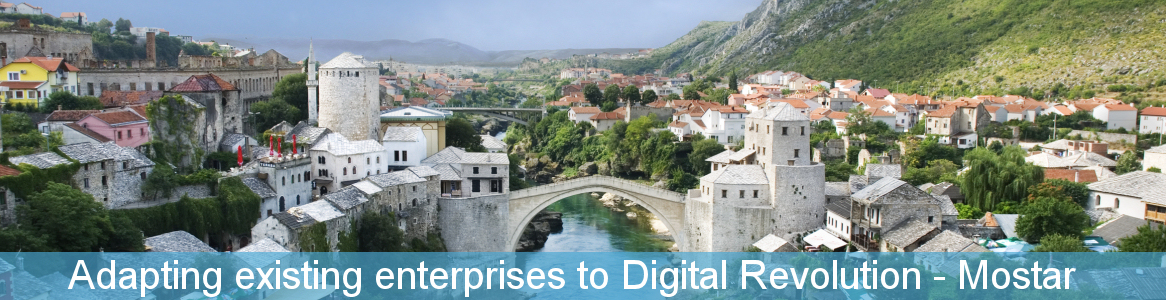 Adapting existing enterprises to Digital Revolution