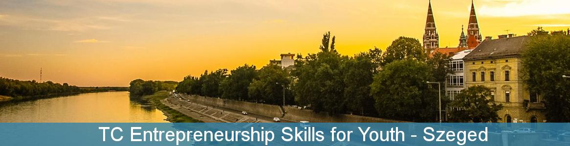 TC Entrepreneurship Skills for Youth