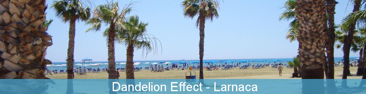 Dandelion Effect