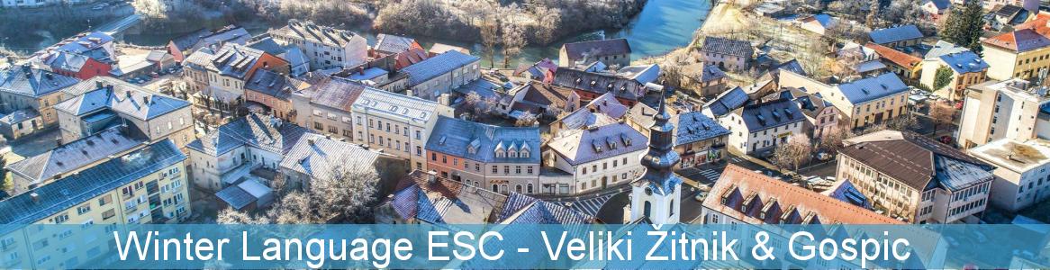 Winter Language ESC