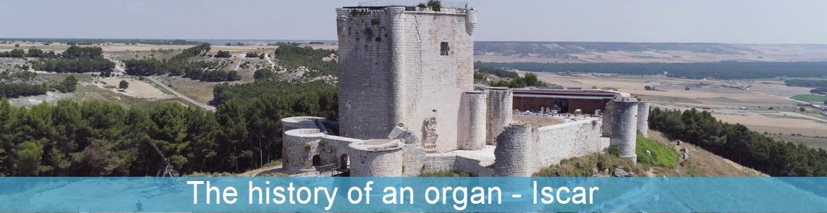 The history of an organ