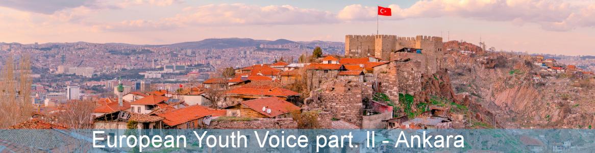 European Youth Voice part. ll