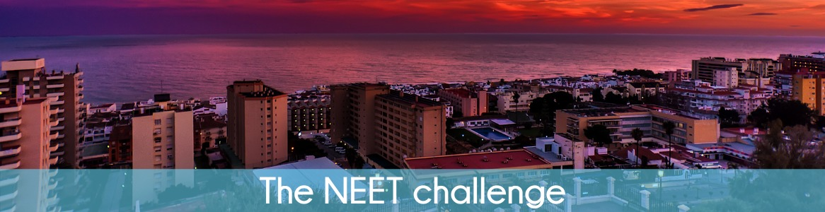 The NEET challenge