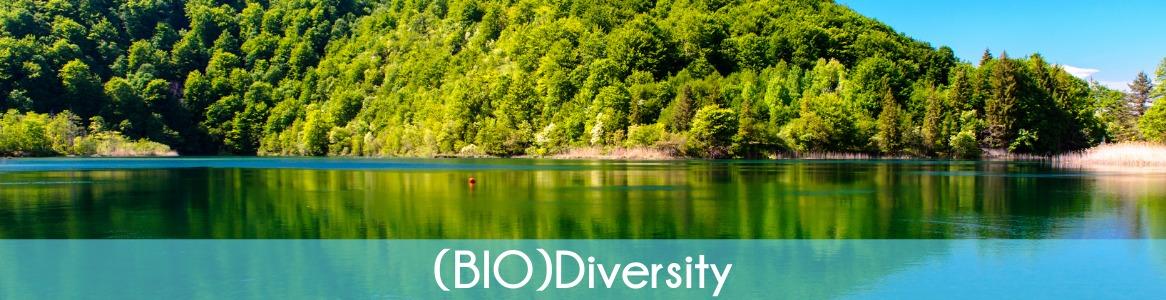 (BIO)Diversity